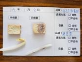 108-1每日食材檢驗:1090108四方干綠豆芽過氧化氫快篩.jpg