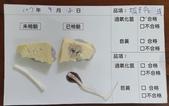 107-1每日食材檢驗:1070918板豆腐.黃豆芽快篩