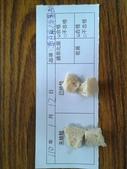 109-1每日食材檢驗:20210112凍豆腐過氧化氫.皂黃快篩.jpg