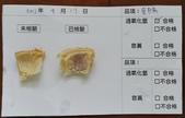 107-1每日食材檢驗:1070917豆腸快篩