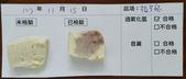 107-1每日食材檢驗:1071115板豆腐快篩