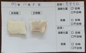 107-1每日食材檢驗:1071008黃金豆腐快篩