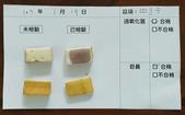 106-1每日食材檢驗:1070119四方乾快篩