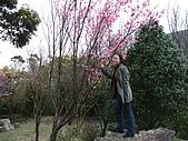 08`0301陽明山食養山房:DSCF0012.JPG