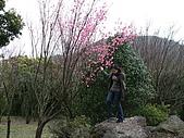 08`0301陽明山食養山房:DSCF0013.JPG