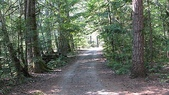 Owl Creek Campsite:IMG_0193