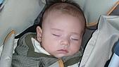 台南赤崁樓:玩的好累哦睡覺覺囉.JPG