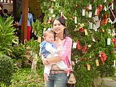 安妮公主花園:DSC01715.JPG