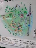 103年八仙山森林國家公園&谷關:20140302_155212.jpg