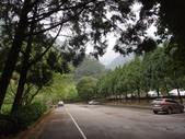 103年八仙山森林國家公園&谷關:DSC08271.JPG