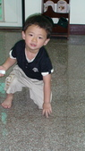 2011年Henry的生活照(二歲十一個月):DSC05030.JPG