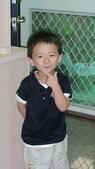 2011年Henry的生活照(二歲十一個月):DSC05037.JPG