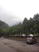 103年八仙山森林國家公園&谷關:DSC08273.JPG