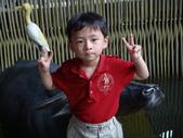 2012年台灣歷吏博物館(台南):DSC01498.JPG