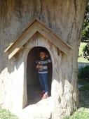 103年卓蘭VilaVilla魔法莊園:DSC08207.JPG
