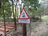 103年八仙山森林國家公園&谷關:DSC08277.JPG