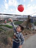 103年潭子採草莓&潭子蘭園&清泉岡:DSC07735.JPG