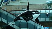 墾丁海生館(2011年):DSC04397.JPG
