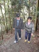 103年八仙山森林國家公園&谷關:DSC08281.JPG
