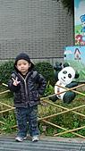 2011年台北木柵動物園:DSC03820.JPG
