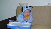 睿睿七個月生活照:DSC03063.jpg
