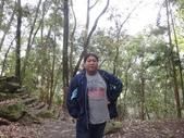 103年八仙山森林國家公園&谷關:DSC08287.JPG