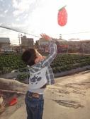 103年潭子採草莓&潭子蘭園&清泉岡:DSC07745.JPG