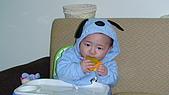 睿睿七個月生活照:DSC03064.jpg