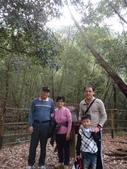 103年八仙山森林國家公園&谷關:DSC08288.JPG