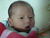 小宸睿Henry的出生照:第8天.JPG
