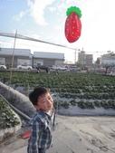 103年潭子採草莓&潭子蘭園&清泉岡:DSC07749.JPG