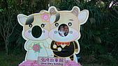 愛情故事館-大黑松小倆口:DSC02349.JPG