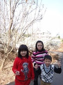 103年新社桃李河畔:DSC07338.JPG
