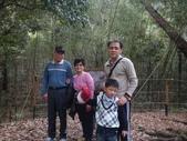 103年八仙山森林國家公園&谷關:DSC08289.JPG