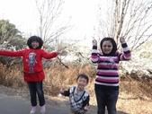 103年新社桃李河畔:DSC07342.JPG