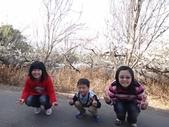 103年新社桃李河畔:DSC07351.JPG