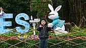 2011年台北木柵動物園:DSC03835.JPG