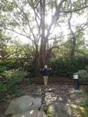 103年羅東林業文化園區:羅東林務局文化園區07.JPG