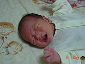 小宸睿Henry的出生照:第14天-眼角的一滴淚.JPG