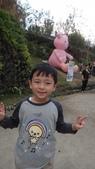 2013年秋紅谷泰迪熊展:DSC06358.JPG