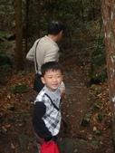 103年八仙山森林國家公園&谷關:DSC08296.JPG