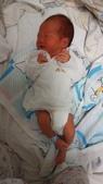 2015年5月~6月Jerry出生照:IMG_20150602_150629.jpg