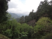 103年八仙山森林國家公園&谷關:DSC08306.JPG