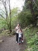 103年八仙山森林國家公園&谷關:DSC08307.JPG