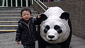 2011年台北木柵動物園:DSC03862.JPG