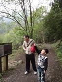103年八仙山森林國家公園&谷關:DSC08309.JPG
