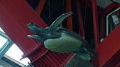 墾丁海生館(2011年):DSC04493.JPG