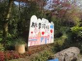 103年新社桃李河畔:DSC07424.JPG