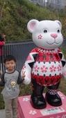 2013年秋紅谷泰迪熊展:DSC06385.JPG