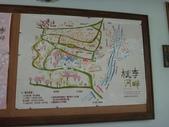 103年新社桃李河畔:DSC07435.JPG